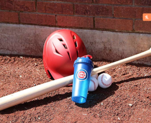 Chicago Cubs Shaker Cup